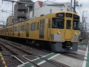 Rscn5646
